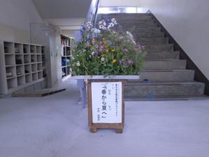 P4210575